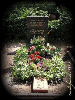 159 - Marlene Dietrich (1)